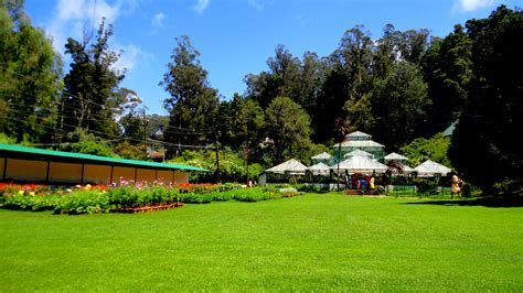 file government botanical garden ooty tamil nadu india