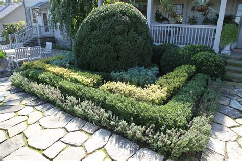 Bushes For Front Of House by Shrubs In Front Of Home Http Lomets
