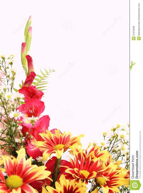 flower background royalty free stock photos image 37272348