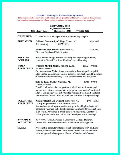most widely used resume format best 25 chronological resume template ideas on