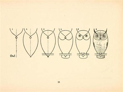 How To Draw An Owl Diy Pictures
