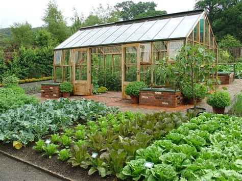 Vegetable Garden Greenhouse Raised Beds Of Veggies I Would To This And The