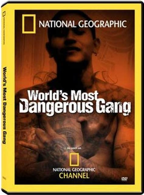 the world's most dangerous gang dvd | streetgangs.com