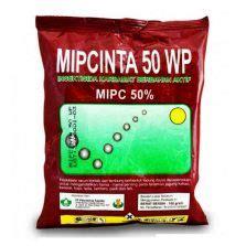 Benlox 50 Wp Fungisida 50 Gram tanaman hias pembersih udara dalam ruangan bibitbunga