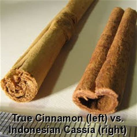 Cinnamon And Honey Detox Side Effects by Honey And Cinnamon Drink Possible Side Effects Weight