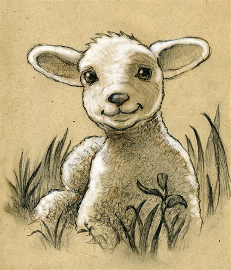 lamb by camartin on deviantart
