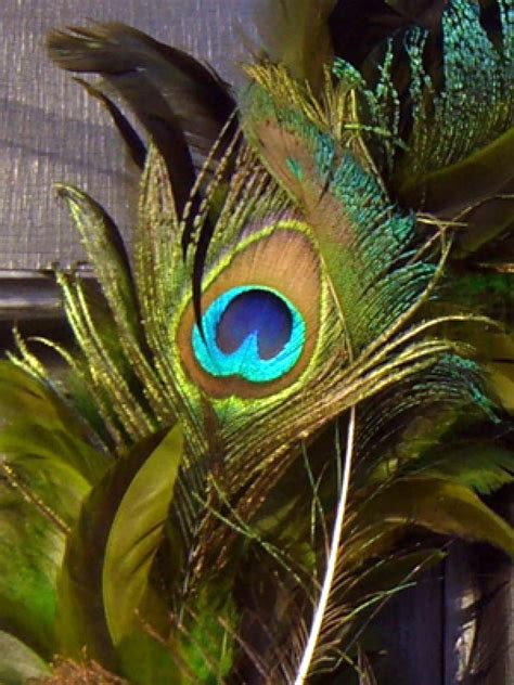 awesome peacock feather wreath decorating ideas gallery in peacock feather wreath hgtv
