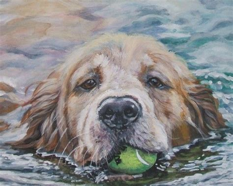 golden retriever fact sheet 313 best images on animal pictures paintings and acrylic