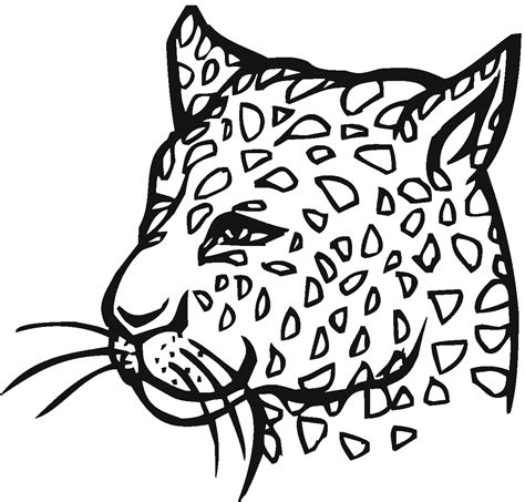 cute cheetah coloring page free leopard coloring pages