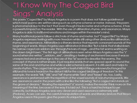 I Why The Caged Bird Sings Essay by Caged Bird Essay A Angelou I Why The Caged Bird Sings Beautiful Ballet A Angelou S I