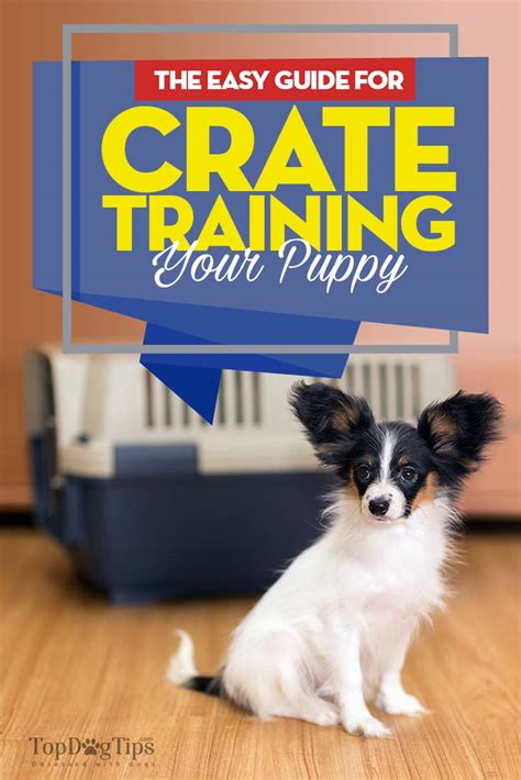 crate a puppy the guide to crate a puppy 20 easy crate tricks couture country