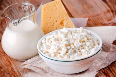 alimentos provioticos alimentos probi 243 ticos funci 243 n y beneficios dieta y