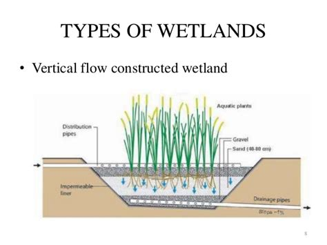 design criteria for constructed wetlands constructed wetland management