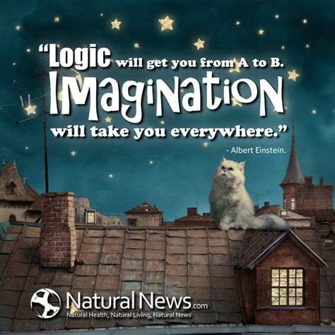 Getting It From Everywhere by Logic Will Get You From A To B Imagination Will Take You