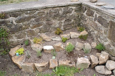 How To Build Rock Garden Rockery Building Ramblings Of A Scatterbrained Lass