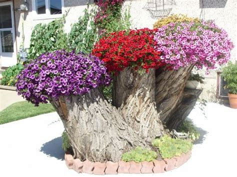 12 tree stumps turned into beautiful flower planters