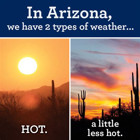 funny hot weather jokes in arizona funny pictures quotes memes funny images