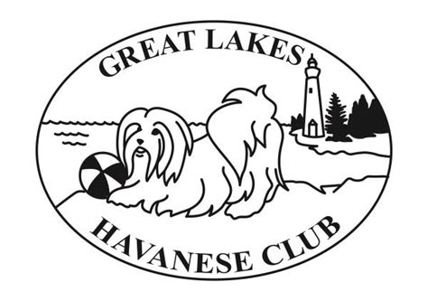 ambler havanese listing and location of local clubs havanese club of america