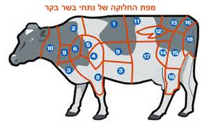 us map k kosher israeli beef cuts explained no more freezing