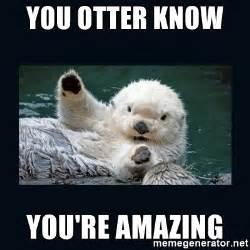 Amazing Meme - you otter know you re amazing otterlovesu meme generator