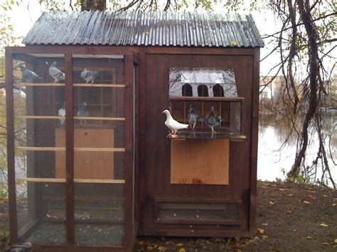 25 best ideas about pigeon loft design on