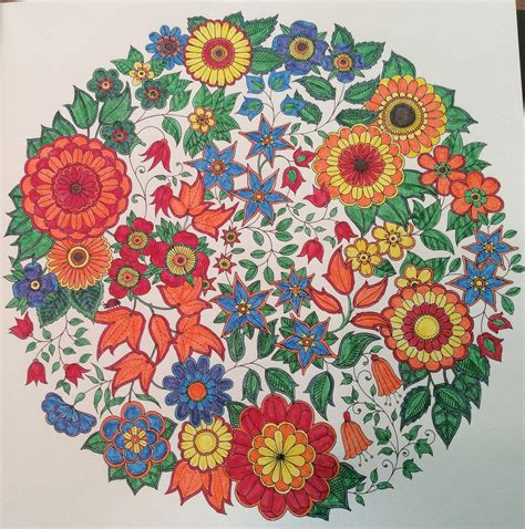 secret garden colouring book chapters finished my page in the secret garden coloring book