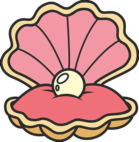 shell clipart shell clipart pink seashell pencil and in color shell