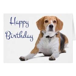 beagle birthday card happy birthday beagle puppy greeting card zazzle