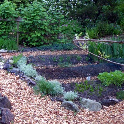 made landscaping retaining walls edible landscaping made easy with avis licht