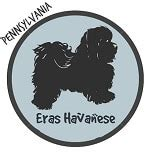 havanese breeders oklahoma find the best havanese breeders with puppies for sale in all 50 states
