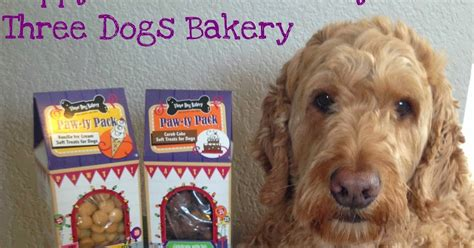 doodle pet bakery spencer the goldendoodle tasty tuesday three dogs bakery