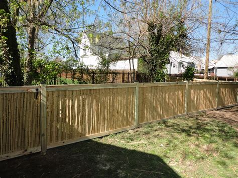 bamboo fencing for the environmentally conscious freedom
