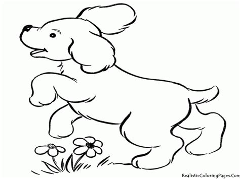 coloring pages of baby dogs baby puppy coloring pages coloring home