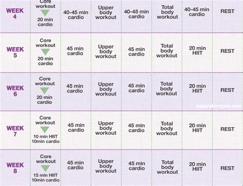 exercise programme template exercise plans for
