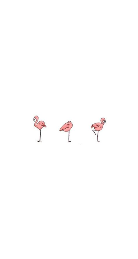 flamingo wallpaper iphone 5 flamingos download more fancy iphone wallpapers at