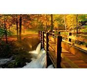 Download Wallpapers Park Trees The Bridge Landscape