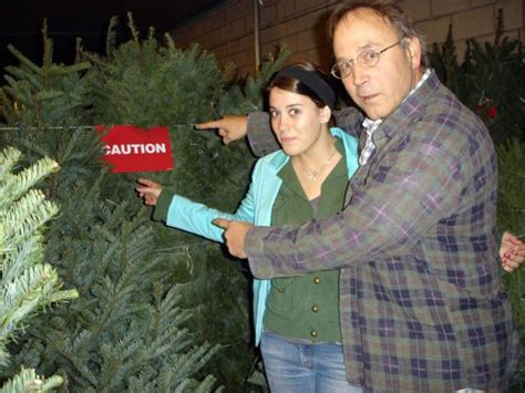 christmas tree has musty smell warning tree mold is real 4 ways to prevent tree allergies the health guide