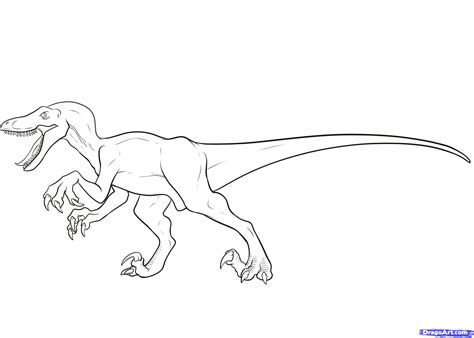drawing page how to draw a velociraptor velociraptor step by step