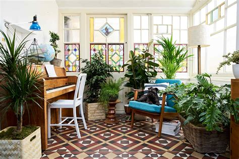 amazing indoor garden design ideas bring life into your 9 easy ways to fill your house with plants pebble magazine