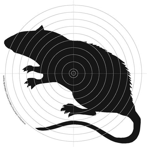 printable rabbit shooting targets 100 x 14cm air rifle shooting targets rat rabbit raven