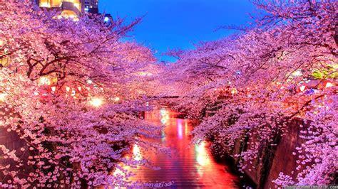 korea garden houston