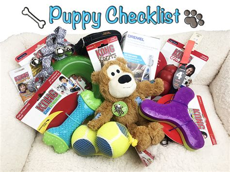 puppy must haves top 10 puppy checklist products to get familyadhd