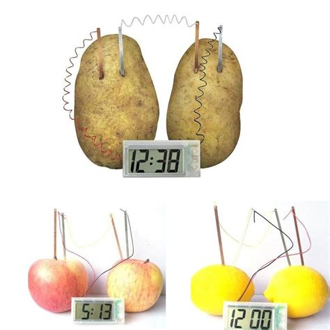 lovely cute potato clock science project experiment kit