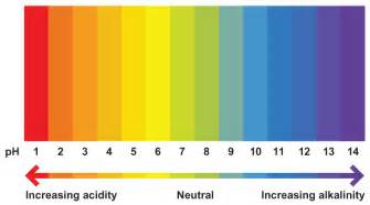 ph color scale scientist s guide to chemistry a glance