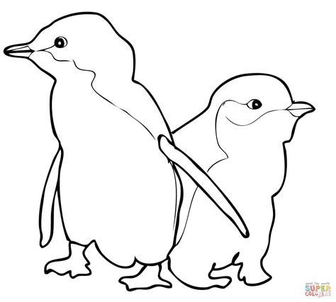 blank penguin coloring page dibujo de dos peque 241 os ping 252 inos azules para colorear