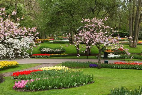 most beautiful gardens the most beautiful flower designs in the world beautiful