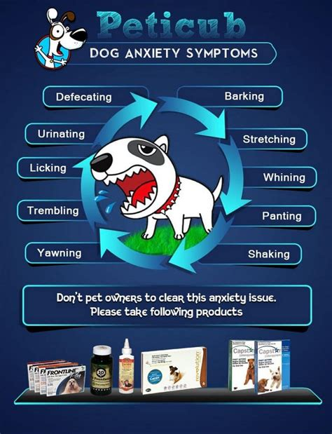panting anxiety excessive panting symptoms and causes