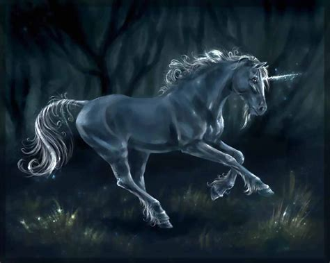 black unicorn hd wallpaper black unicorn wallpaper desktop wallpapers gallery