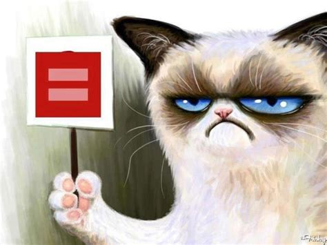 Gay Cat Meme - even grumpy cat supports gay marriage and she hates