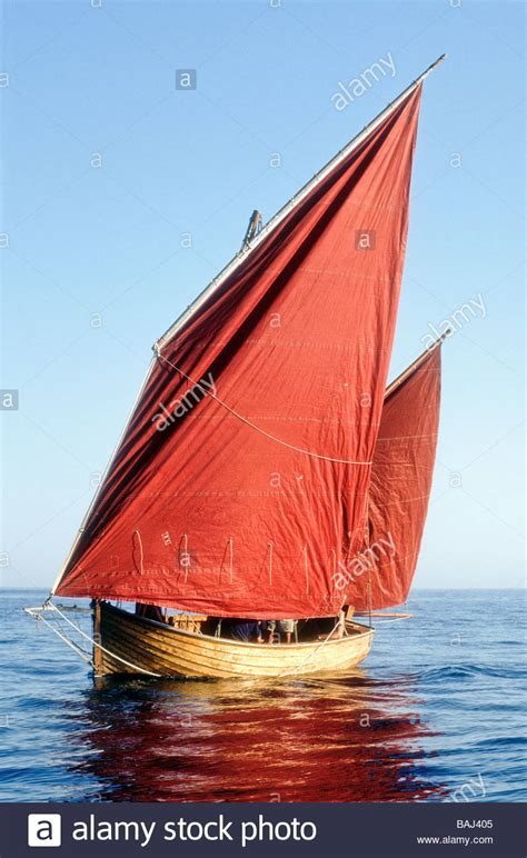 sailing boat england sailing a beer lugger boat devon england uk europe stock